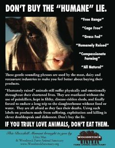 If you truly love animals, don't eat them.