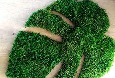 | Moss Wall Art, Moss Art, House Plants Decor, Plant Decor, Boho Life, Biscuit, Architect Design, Flower Decorations, Home And Garden