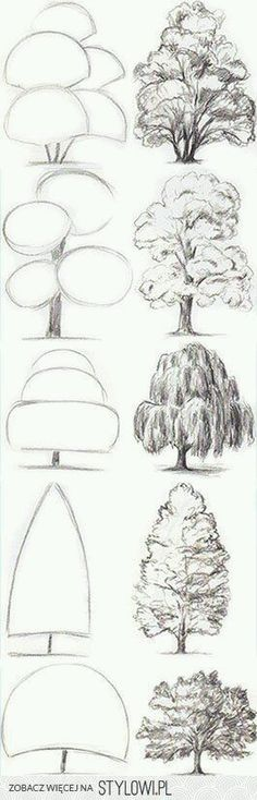 i like trees. | Learn Drawing, Drawing Tricks, Sketching Tips, Sketching Techniques, Basic Drawing, Drawing Tutorials, Art Tutorials, Drawing Practice, Drawing Reference