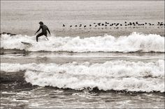 Los Angeles, USA - surfers hit the waves at Venice Beach early in the morning (by Ivan Lo)