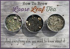 Learn how to brew loose leaf tea and everything else you need to know about it - from its benefits to buying in bulk to the different types to making your own blends.