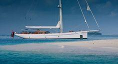 carl linne yacht - Buscar con Google