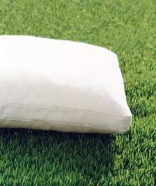 Plump up flattened down cushions by setting them outside in the sun for a few hours.  The sun will evaporate the moisture that filling gets over time.