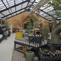 """夫が代休だったので、今話題のスポット""""the Farm""""に行ってきました~。 週末は激混みらしいけど、雨の平日なので空いてて良かった☆  オシャレすぎ素敵すぎ!! #thefarmuniversal Flower Nursery, Plant Nursery, Garden Center Displays, Garden Centre, Garden Shop, Home And Garden, Brick And Wood, Store Displays, Urban Farming"""