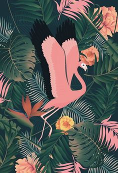 illustration on tropical theme with flamingo, bird of paradise flowers, palm leaves and monstera leaves.Impressive illustration on tropical theme with flamingo, bird of paradise flowers, palm leaves and monstera leaves. Print Wallpaper, Wallpaper Backgrounds, Iphone Wallpaper, Wallpapers, Wallpaper Ideas, Flamingo Wallpaper, Motif Tropical, Tropical Birds, Tropical Prints