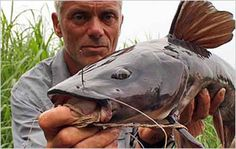Top 10 River Monsters