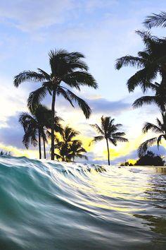 waves and palm trees The Beach, Ocean Beach, Ocean Waves, Beach Pics, Nature Landscape, Belle Photo, Beautiful Beaches, Beautiful Landscapes, Beautiful World