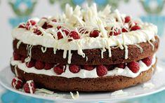Double chocolate and raspberry cake