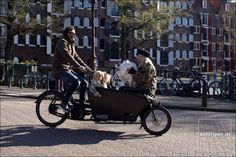 25 03 2017, 10:00  The Netherlands, Amsterdam, Brouwersgracht  © Thomas Schlijper