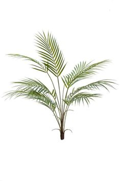 Realistic bunched stem of artificial areca palm leaves with an overall height of The leaves are supplied in a bunch, on a single stem ready to place in a vase or pot. Fake Plants, Artificial Plants, Potted Plants, Plant Pots, Kentia Palm, Scandinavian Style, Palm Trees, House Plants, Greenery