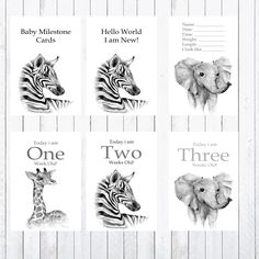 Baby Milestone Cards, 4x6 Cards, Photo Props, Jungle Animals Bridal Shower Games, Baby Shower Games, Baby Milestone Cards, Jungle Animals, Baby Milestones, Nursery Prints, Card Sizes, Photo Cards, Photo Props
