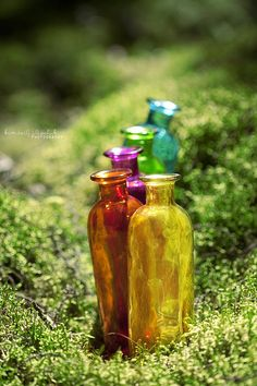 . . Coloured Glass . . by *livingdead01