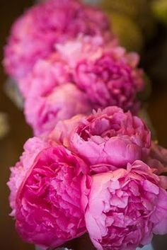 Pink peonies for Mother's Day.