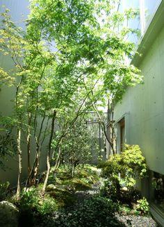 福岡ガーデニング&造園工房~■New最新の作品。 Backyard House, Backyard Landscaping, Atrium Garden, Japanese Garden Landscape, Bali House, Japanese House, Small Gardens, Garden Styles, Landscape Architecture