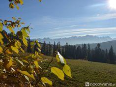 Turyści dla Turystów - noclegi najchętniej polecane w Poroninie: http://www.nocowanie.pl/turysci-polecaja:-najlepsze-noclegi-w-poroninie.html #Poronin #góry #mountains #Poland #accommodation