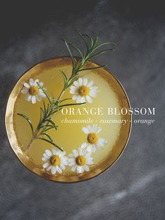 ORANGE BLOSSOM // Th