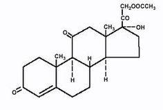 Η κορτιζόνη είναι ένα απολύτως φυσικό προϊόν που παράγεται από τον ανθρώπινο οργανισμό και η έλλειψη του οποίου είναι ασυμβίβαστη με ...