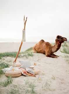 Inspired by Middle Eastern Desert Wedding Details - Inspired By This