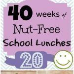 Week 20: 40 Weeks of Nut Free Kids School Lunches