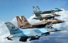 U.S. Air Force | Boeing F-15C Eagle's & Lockheed Martin F-16C Fighting Falcon's | USAF Agressors