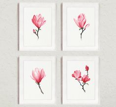 Magnolia Watercolor Print Pink Home Decor Painting 4 Art Prints Wall Decor by ColorWatercolor on Etsy https://www.etsy.com/listing/226698156/magnolia-watercolor-print-pink-home