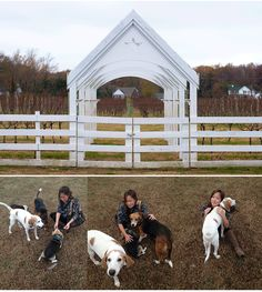 This winery in Virginia serves local grown oysters (straight from the rappahannock a few miles away) and rescues homeless hounds to have them protect the vines from deer at night. You get to walk through the vineyard with milk bones to feed them!