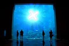 Xovilichter Atlantis
