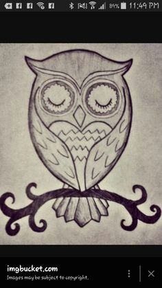 easy to draw very cute owl!