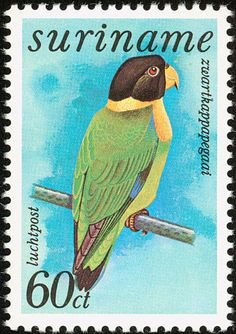 Caica Parrot stamps - mainly images - gallery format