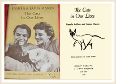 The Cats in our lives by Pamela and James Mason