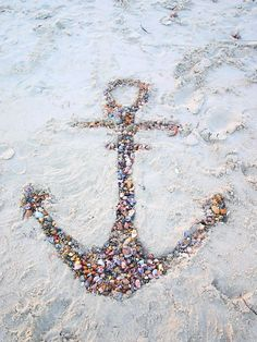 anchored seashells..