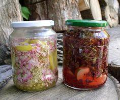 Erdőkóstoló: Fűszeres, gyógyfüves ecetek vadontermő növényekből...