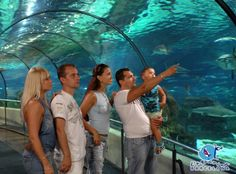 5 Things for Families to do in 5 Things for Families to do in Zoo in Park Ciutadella Barcelona The . Read Things for Families to do in Barcelona
