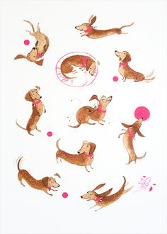 Daxies - Character Study - Alisa Coburn Illustration - Tap the pin for the most adorable pawtastic fur baby apparel! You'll love the dog clothes and cat clothes! Dachshund Funny, Arte Dachshund, Dachshund Love, Daschund, Dachshund Puppies, Dachshund Drawing, Dapple Dachshund, Chihuahua Dogs, Pet Dogs