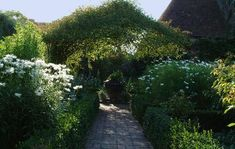 white garden at Sissinghurst...their are white blooms here in some form all season long