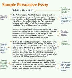Cool argumentative essay topics