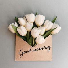 Good Morning Romantic, Good Morning Friends Images, Good Morning Nature, Good Morning Roses, Good Morning Image Quotes, Good Night Love Images, Good Morning Beautiful Images, Good Morning Photos, Morning Pictures