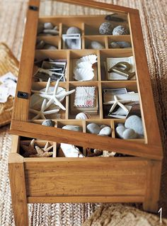 Collect all differant shells from you beach vacations and display in cofee table -Pottery Barn