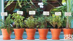 Hortinha de um restaurante paulistano. Vasos de cerâmica com espécies como alfavaca, melissa e erva-doce ganharam cartões impressos, colados em espetos.  Fotografia: Marcelo Resende.