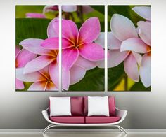 "Pink Plumeria flowers - 3 Panel Split (Triptych) Canvas Print. 1.5"" deep frames - flower photography for living room decor & interior design by CanvasQuest on Etsy https://www.etsy.com/listing/208662747/pink-plumeria-flowers-3-panel-split"