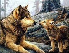 animali lupi - Cerca con Google