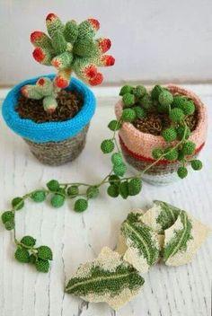 Croché casos plantas