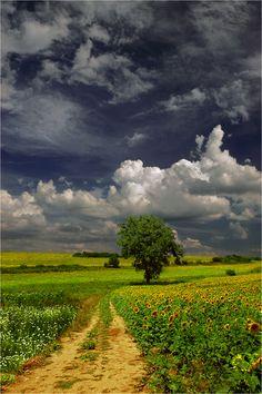 Photo Summer Memories... by Juliana Nan on 500px