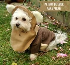 Make this easy Ewok Dog Costume with these free PDF patterns. Enjoy a funny halloween doing crafts with your puppy! And may the Force be with you! Pet Costumes, Dog Coat Pattern, Vest Pattern, Dog Tuxedo, Tuxedo Jacket, Dog Pajamas, Dog Clothes Patterns, Costume Patterns, Model