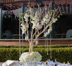 manzanita centerpiece | ... Wholesale Flowers Florist & Bouquets - Manzanita Wedding Centerpiece