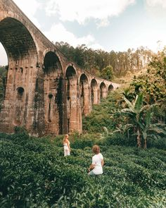 Things You MUST Do in Sri Lanka - Sri Lanka Must-see Attractions must do sri lanka ella Nine arch bridge. Live, laugh, lovemust do sri lanka ella Nine arch bridge. Places To Travel, Travel Destinations, Places To Visit, Sri Lanka Ella, Arch Bridge, Destination Voyage, Adventure Is Out There, Travel Goals, Travel Style