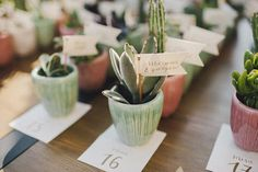 Wedding Planner: Detallerie. Seating plan con suculentas y caligrafía dorada. Seating plan with succulents and gold calligraphy. Mint and peach.