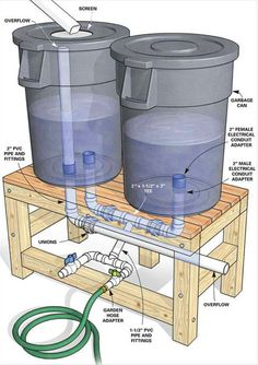 Collecting rainwater and storing in barrels to use in the garden (note this is illegal in places)