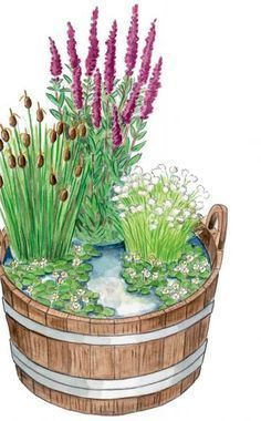 Natural mini-pond: The combination of wooden tub and plants with … - Diy Garden Projects Mini Pond, Garden Sofa, Rooftop Garden, Diy Garden Projects, Gnome Garden, Garden Boxes, Garden Bar, Water Garden, Garden Planning