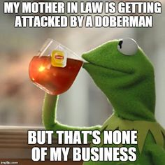 But Thats None Of My Business | MY MOTHER IN LAW IS GETTING ATTACKED BY A DOBERMAN BUT THAT'S NONE OF MY BUSINESS | image tagged in memes,but thats none of my business,kermit the frog | made w/ Imgflip meme maker